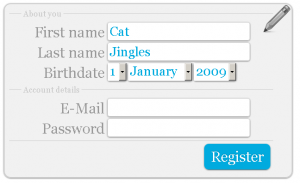 CSS3 big style fieldset registration form