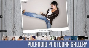 polaroidphotobar