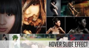 HoverSlideEffect