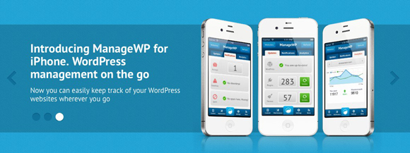 Manage-WordPress-Sites-from-One-Dashboard-580-3