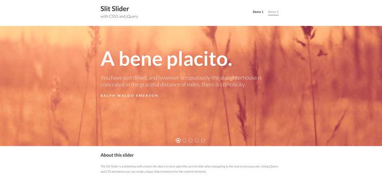 SlitSlider_demo2