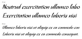 Collective49_font1