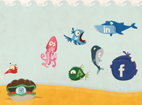Collective50_SocialFish