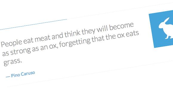Quotes Rotator