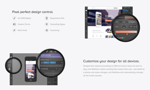 Collective77_webflow