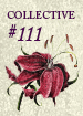 Collective111