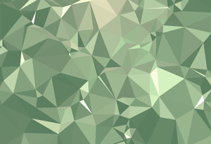 Collective113_triangles