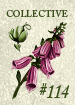 Collective114