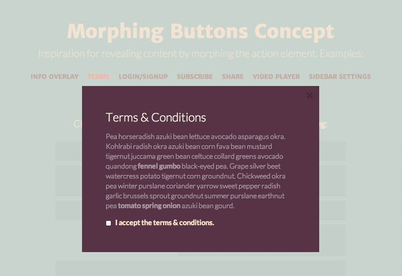MorphingButtons02