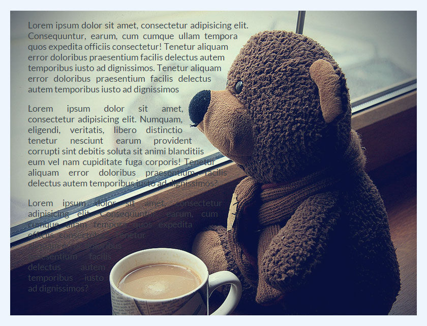 bear-example