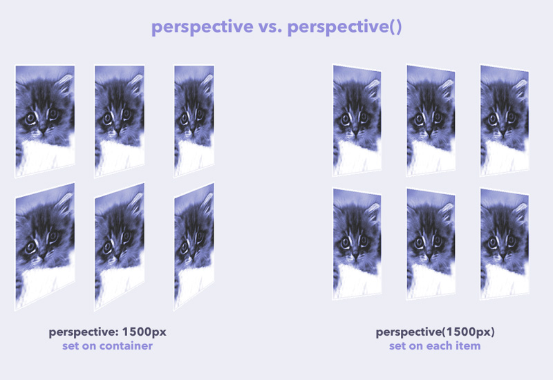 perspective-vs-perspective