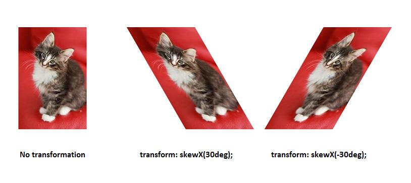 skewX-example