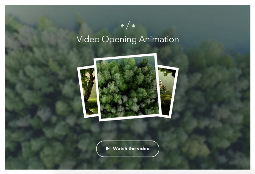 VideoOpeningAnimation_screen2