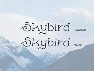 Collective220_skybird