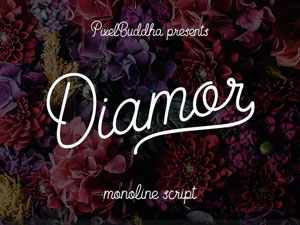Collective224_DiamorFont