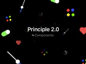 Collective239_Principle
