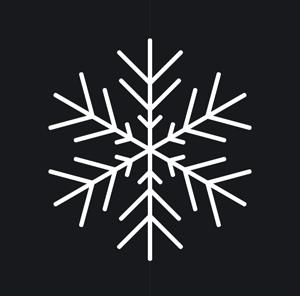coll267_snowflake