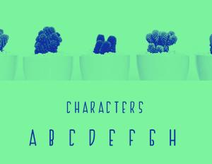 C301_CactusFont