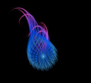 C309_Squid