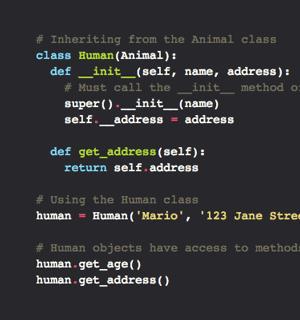 C312_PythonJS