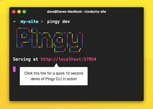 C313_Pingy