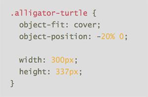 C322_Objectfit