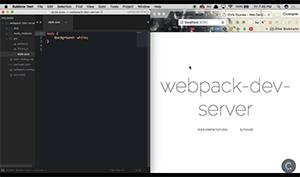 C323_Webpackdevserver