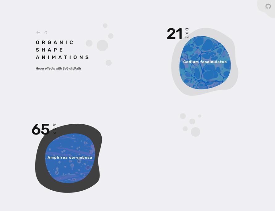 OrganicShapeAnimations_01
