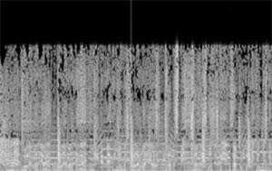 C337_MusicRecommender