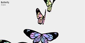 C348_butterfly