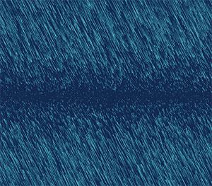 C363_vectorfield