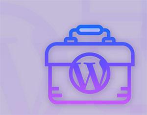 C385_wordpress