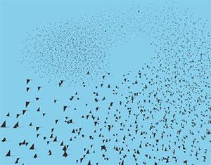 C412_flocking