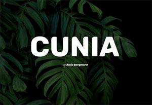 C413_cunia