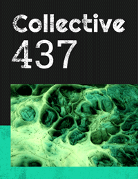 Collective437
