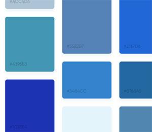C444_colors