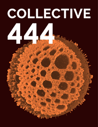 Collective444