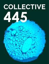 Collective445