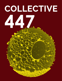 Collective447