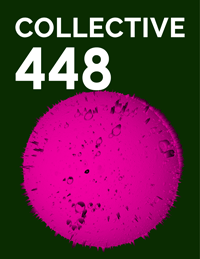 Collective448