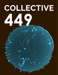 Collective449