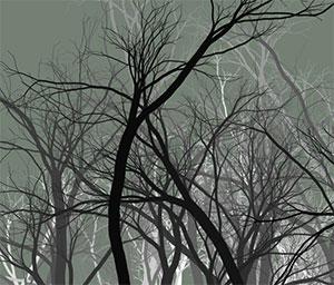 C468_trees