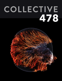 Collective478