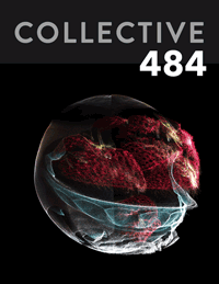 Collective484