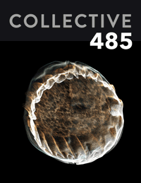 Collective485