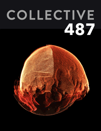 Collective487