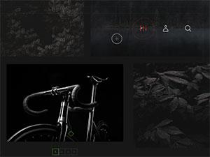 C489_cursors