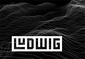C492_Ludwig