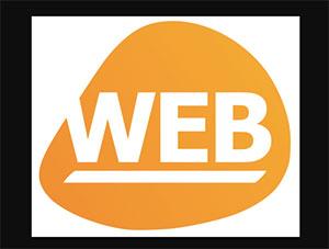 C497_web