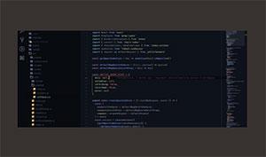C513_vscode